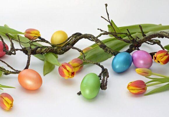 🐰 Kellemes Húsvéti Ünnepeket kívánnak az Újszülött, Koraszülött és Gyermekosztály dolgozói! 🐰